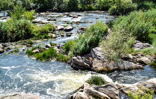 Річка в маєтку Скаржинського