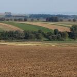 Аустерліцьке поле. Фото з реконструкції у Славкові-Аустерлиці (Чехія)
